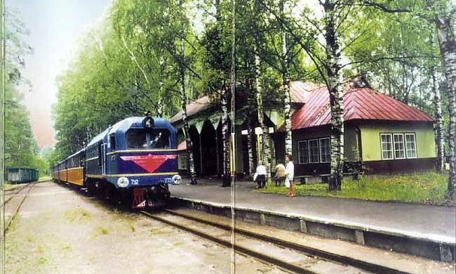 Bernu-dzelzcels-7